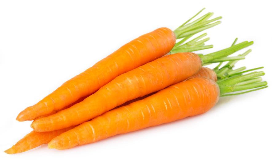 carrot-dog-treats-huds-and-toke.jpg