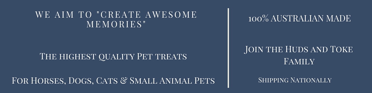 dog-treats-horse-treats-and-pet-treats-huds-and-toke-banner.jpg