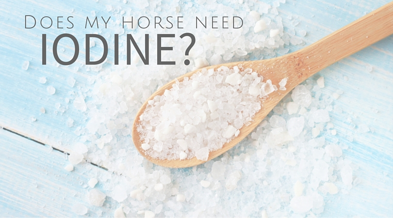Does my horse need Iodine?