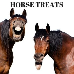 Gourmet Horse Treats with Molasses
