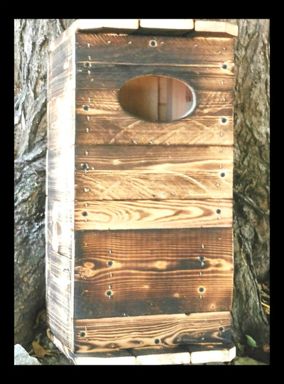 Kestrel Hawk nesting box, fire hardened to last 15-20 years