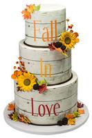 Wedding #041