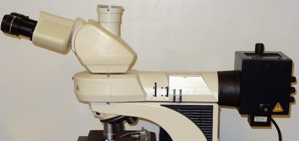 Laboratory Optical Service Inc