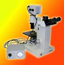 Leitz Diavert Phase Contrast Inverted Microscope