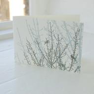 Birdsong Letterpress Greeting Card LP-LS-10-GC