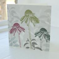 Echinacea Greeting Card FF-15-GC