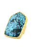 Christina Greene Turquoise Shield Ring - Hero