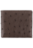 Ostrich Hipster Wallet - Brown - Front