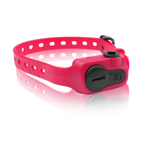 Dogtra iQ No Bark Collar Pink (IQ-BARK-PNK)
