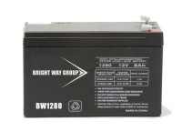 Brightway 110Ah 12V AGM Battery