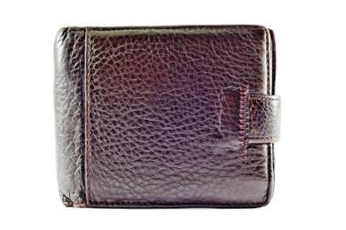 Brown Snake Skin Wallet