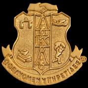 AKA Goldblast Lapel Pin