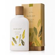 Thymes Olive Leaf Body Lotion 9.25oz