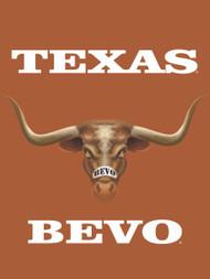 Texas Longhorn 3D Bevo  Garden Flag