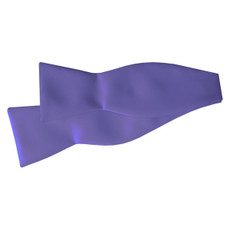 New Purple Self Tie Bow Tie
