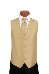 Sterling Vest and Tie Set in Gold
