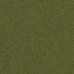 341612, Canson Mi-Teintes, Ivy