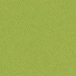 341614, Canson Mi-Teintes, Green