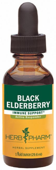 Alternate product views:  BLACK ELDERBERRYBLACK ELDERBERRY