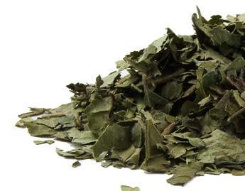 Curry Leaf, organic - 1 oz.