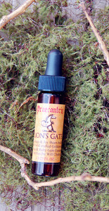 "Lion's Gate: ""Your Portal to Courage"" from Highest Self Elixirs- 1/4 oz."