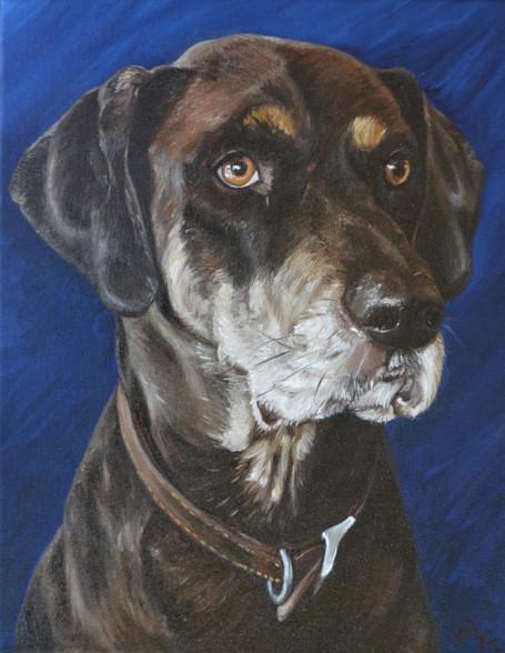 "12""  X 16"" Custom Pet Painting- One Pet, No Background"