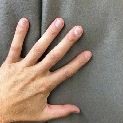 Petrified Gray Wool Home Decor Fabric