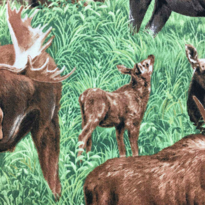American Wildlife Moose in Grass, Green and Brown Quilting Fabric