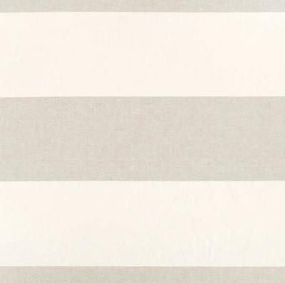Robert Allen HORIZON STRIPE LINEN MULTI-PURPOSE Fabric