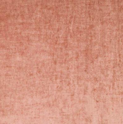 Robert Allen VELVET LINGE  APRICOT UPHOLSTERY Fabric