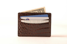 Genuine Alligator Credit Card Case Brown