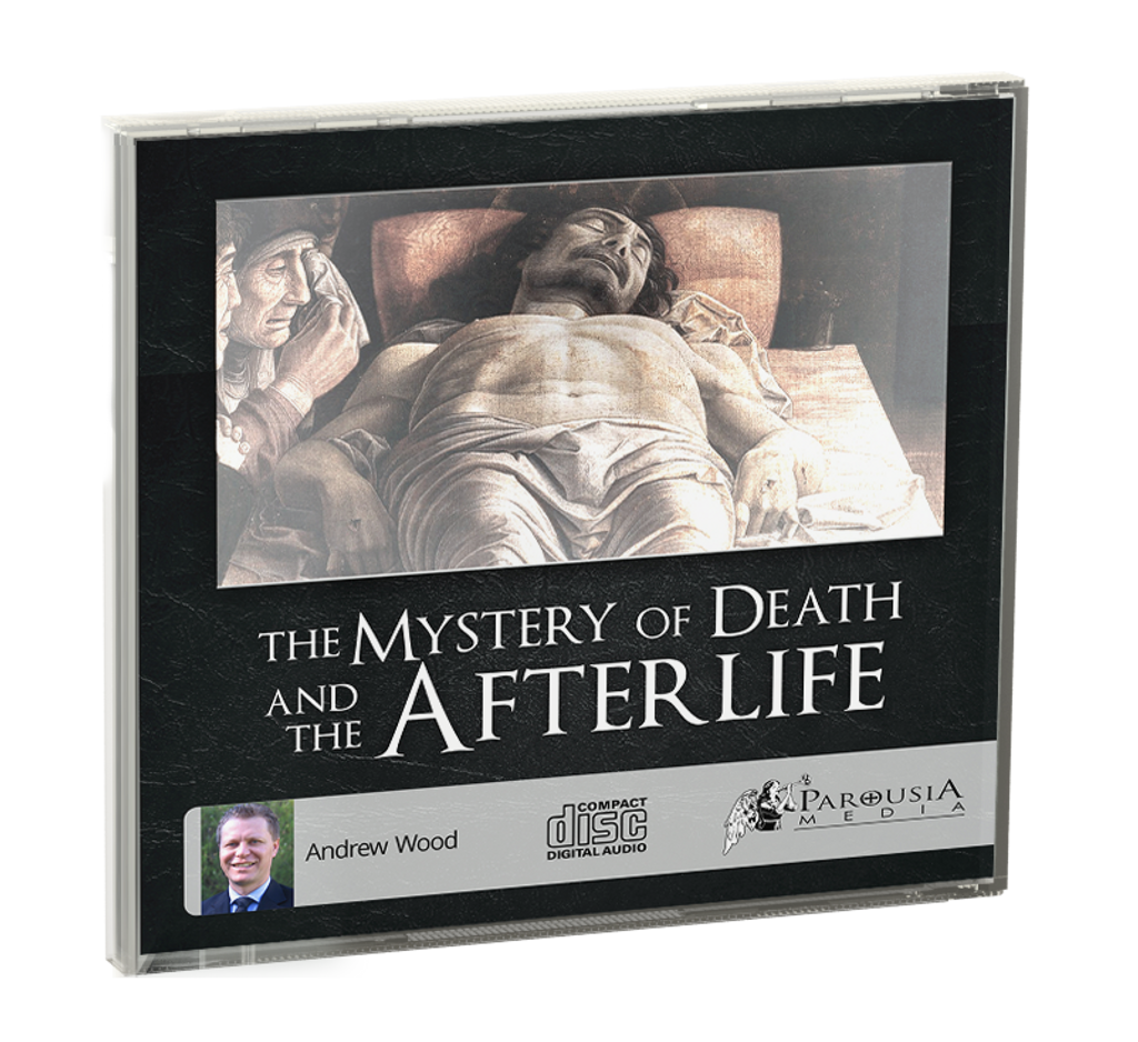 death and afterlife God is with us: what near-death and other spiritually transformative experiences teach us about god and afterlife - by dr ken r vincent.