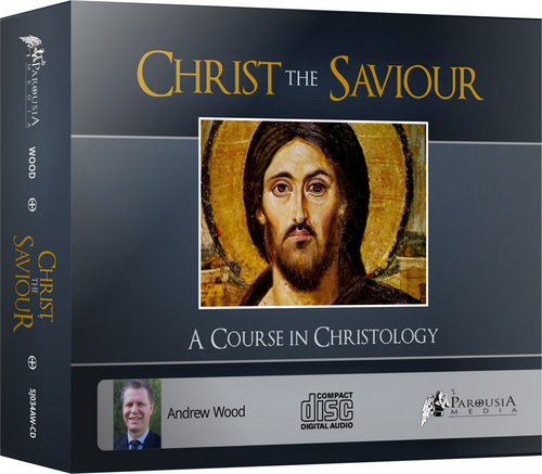 Christ the Saviour: A Course on Christology