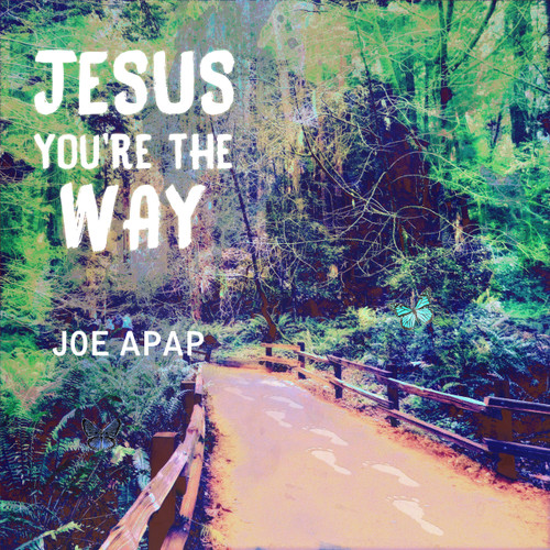 Jesus You're the Way (Music CD)