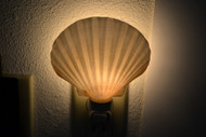 Deep Irish Scallop Shell Nightlight
