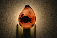 Carved Tiger Turtle Shell Nightlight
