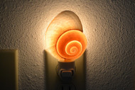 Brown Landsnail Seashell Nightlight