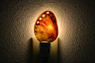 Polished Red Abalone Seashell Nightlight