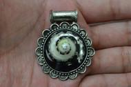 Black Conus Undosa Tip Shell Head Silver Plated Pendant