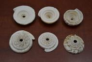 Brown Cut Conus Cassis Rufa Shell Head Pendant