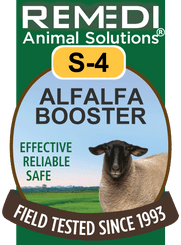 Sheep Alfalfa Booster