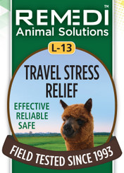 Travel Stress Relief, L-13