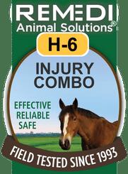 Turbo  Injury Combo, H-6