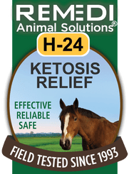 Turbo Ketosis Relief, H-24