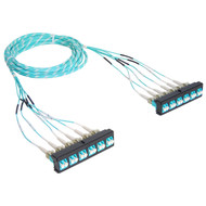 Pre-terminated Cassette Fiber Optic Patch Panel with Cable Assembly, 12 Fibers, Bezel to Bezel
