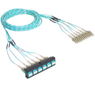 Pre-terminated Cassette Fiber Optic Patch Panel with Cable Assembly, 12 Fibers, Bezel to Patch Cords