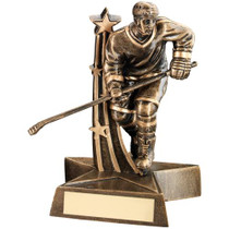 ICE HOCKEY PLAYER AWARD