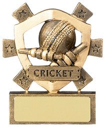 STAR CRICKET TROPHY