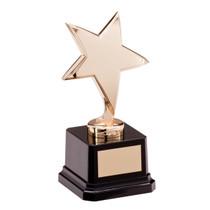 Stunning Challenger gold star achievement Award best seller great price