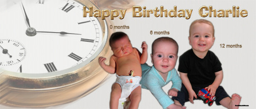 cheap-personalised-party-banners-online-time-flies-birthday-banner-d